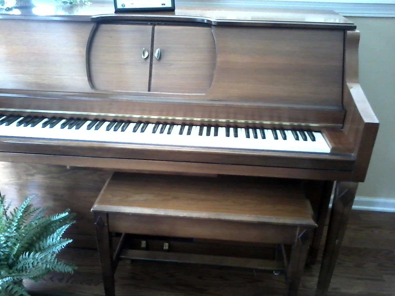 DL Piano Works - Piano Tuning, Repair and Refinishing - photo#16